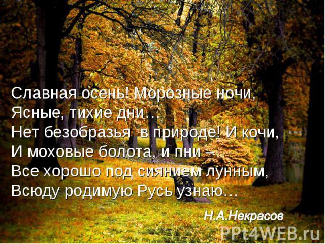Славная осень! Морозные ночи,Ясные, тихие дни…Нет безобразья в природе! И кочи,И моховые болота, и пни – Все хорошо под сиянием лунным,Всюду родимую Русь узнаю… Н.А.Некрасов