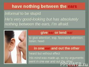 have nothing between the ears Informal to be stupidHe's very good-looking but ha