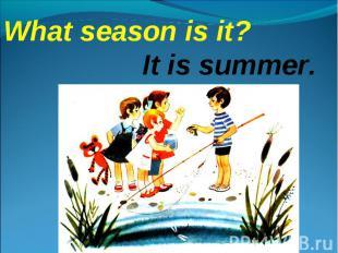 What season is it?It is summer.