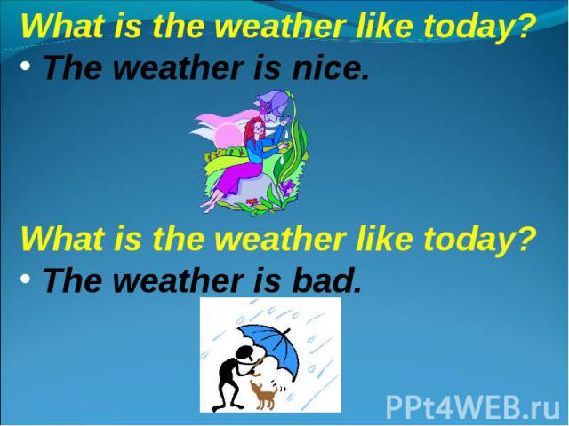 What is the weather like today? The weather is nice.What is the weather like today? The weather is bad.