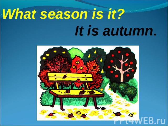 What season is it?It is autumn.