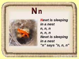 "Newt is sleeping in a nest n, n, n n, n, n Newt is sleeping in a nest ""n"" says """