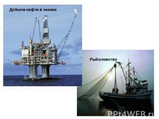 Добыча нефти в океане Рыболовство