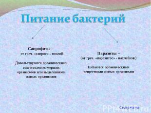 Питание бактерий Сапрофиты – от греч. «сапрос» - гнилойДовольствуются органическ