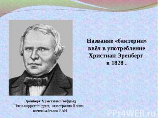 Название «бактерии» ввёл в употребление Христиан Эренберг в 1828 .Эренберг Христ