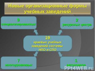 Новые организационные формы учебных заведений 19краевых учебных заведений систем