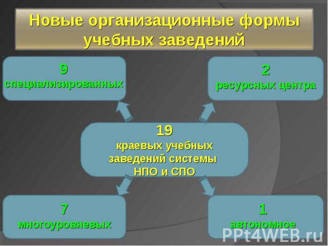 Новые организационные формы учебных заведений 19краевых учебных заведений системы НПО и СПО