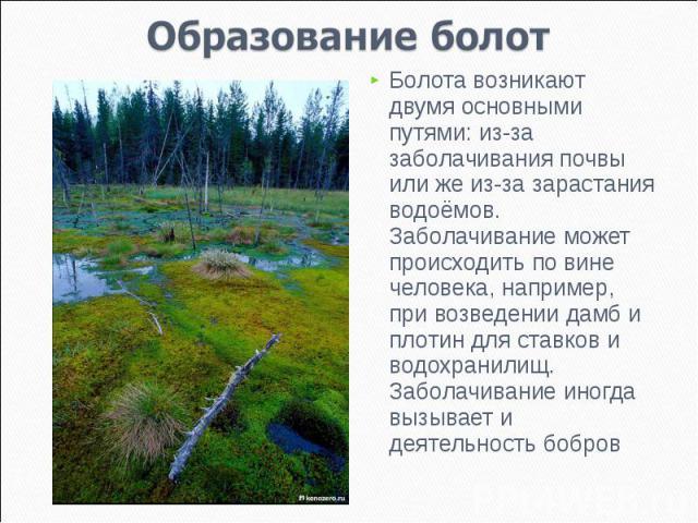 Образование болот Болота возникают двумя основными путями: из-за заболачивания почвы или же из-за зарастания водоёмов. Заболачивание может происходить по вине человека, например, при возведении дамб и плотин для ставков и водохранилищ. Заболачивание…