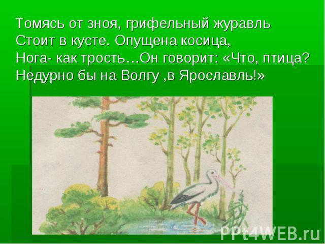Томясь от зноя, грифельный журавль Стоит в кусте. Опущена косица, Нога- как трость…Он говорит: «Что, птица? Недурно бы на Волгу ,в Ярославль!»