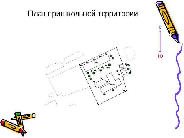 План пришкольной территории