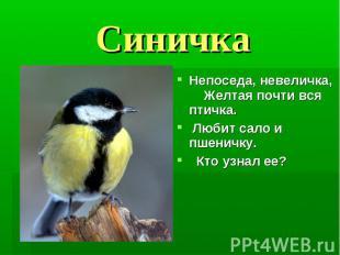 Синичка Непоседа, невеличка, Желтая почти вся птичка. Любит сало и пшеничку. Кто