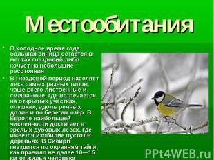 Местообитания В холодное время года большая синица остаётся в местах гнездовий л