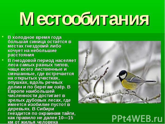 Местообитания В холодное время года большая синица остаётся в местах гнездовий либо кочует на небольшие расстоянияВ гнездовой период населяет леса самых разных типов, чаще всего лиственные и смешанные, где встречается на открытых участках, опушках, …