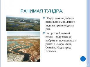 Ранимая тундра. Воду можно добыть вытаиванием пилёного льда из пресноводных рек.