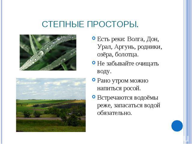 Степные просторы. Есть реки: Волга, Дон, Урал, Аргунь, родники, озёра, болотца. Не забывайте очищать воду.Рано утром можно напиться росой.Встречаются водоёмы реже, запасаться водой обязательно.