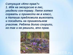 Ситуация «Кто прав?» 1. Идя на экскурсию в лес, увидели сон-траву. Петя хотел со