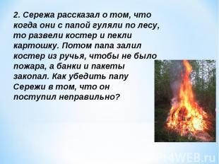 2. Сережа рассказал о том, что когда они с папой гуляли по лесу, то развели кост