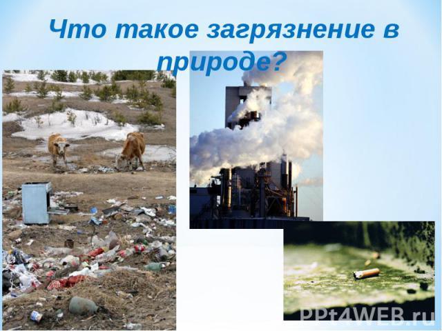 Что такое загрязнение в природе?