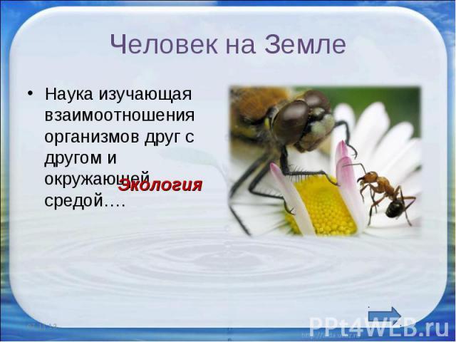 Человек на Земле Наука изучающая взаимоотношения организмов друг с другом и окружающей средой….