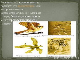 Большинство эволюционистов полагает, что археоптерикс, имя которого означает «др