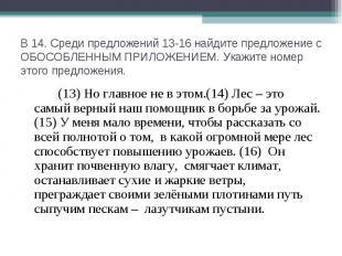 В 14. Среди предложений 13-16 найдите предложение с ОБОСОБЛЕННЫМ ПРИЛОЖЕНИЕМ. Ук