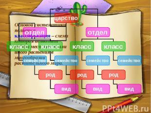 Основой систематики является классификация – схема которая позволяет найти место