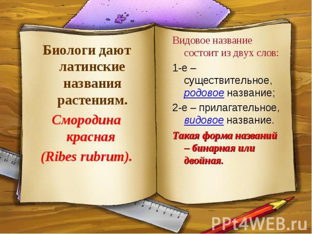 Биологи дают латинские названия растениям.Смородина красная (Ribes rubrum).Видовое название состоит из двух слов:1-е – существительное, родовое название;2-е – прилагательное, видовое название.Такая форма названий – бинарная или двойная.