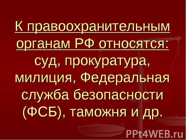 К правоохранительным органам РФ относятся: суд, прокуратура, милиция, Федеральная служба безопасности (ФСБ), таможня и др.