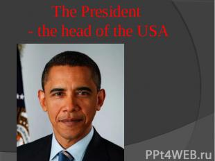 The President - the head of the USA
