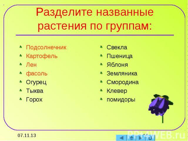 Разделите названные растения по группам: ПодсолнечникКартофельЛенфасольОгурецТыкваГорохСвеклаПшеницаЯблоняЗемляникаСмородинаКлеверпомидоры
