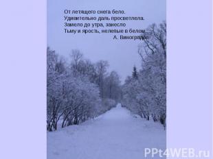 От летящего снега бело.Удивительно даль просветлела.Замело до утра, занеслоТьму