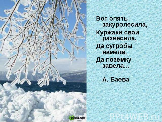 Вот опять закуролесила, Куржаки свои развесила,Да сугробы намела, Да поземку завела… А. Баева