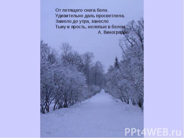 От летящего снега бело.Удивительно даль просветлела.Замело до утра, занеслоТьму и ярость, нелепые в белом… А. Виноградов