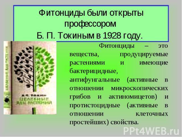 Фитонциды были открыты профессором Б. П. Токиным в 1928 году. Фитонциды – это вещества, продуцируемые растениями и имеющие бактерицидные, антифунгальные (активные в отношении микроскопических грибов и актиномицетов) и протистоцидные (активные в отно…