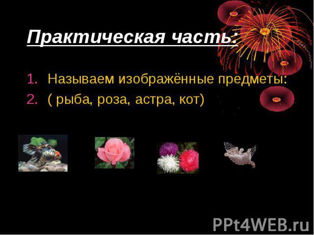 Практическая часть: Называем изображённые предметы: ( рыба, роза, астра, кот)