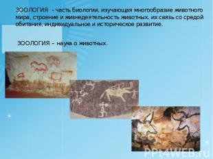 ЗООЛОГИЯ - часть биологии, изучающая многообразие животного мира, строение и жиз