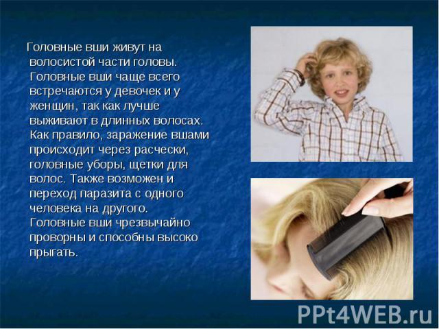 Головные вши живут на волосистой части головы. Головные вши чаще всего встречаются у девочек и у женщин, так как лучше выживают в длинных волосах. Как правило, заражение вшами происходит через расчески, головные уборы, щетки для волос. Также возможе…