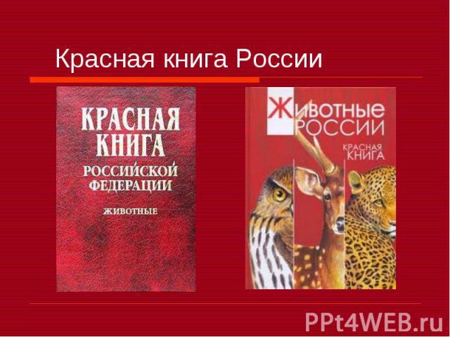 Красная книга России презентация к уроку Окружающий мир Красная книга России