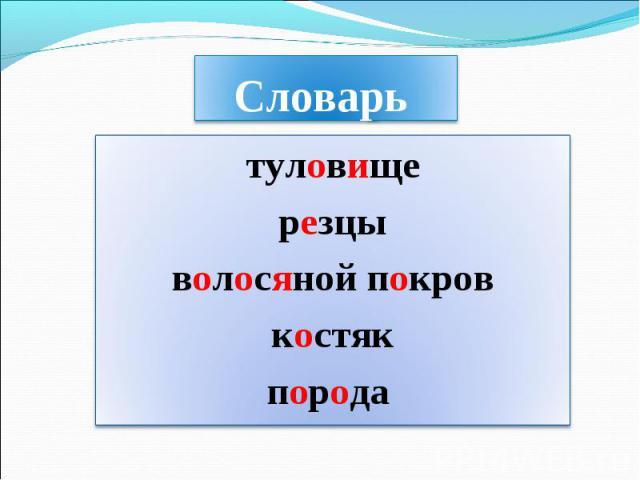 Словарь туловищерезцыволосяной покровкостякпорода