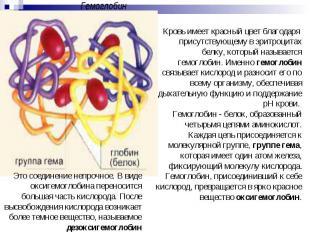 ГемоглобинЭто соединение непрочное. В виде оксигемоглобина переносится большая ч