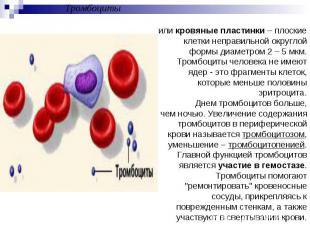 Тромбоцитыили кровяные пластинки – плоские клетки неправильной округлой формы ди