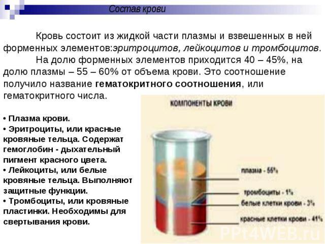 Состав кровиКровь состоит из жидкой части плазмы и взвешенных в ней форменных элементов:эритроцитов, лейкоцитов и тромбоцитов. На долю форменных элементов приходится 40 – 45%, на долю плазмы – 55 – 60% от объема крови. Это соотношение получило назва…