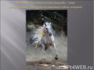 Главное достоинство лошади - это откровенность и расположение идти вперёд.