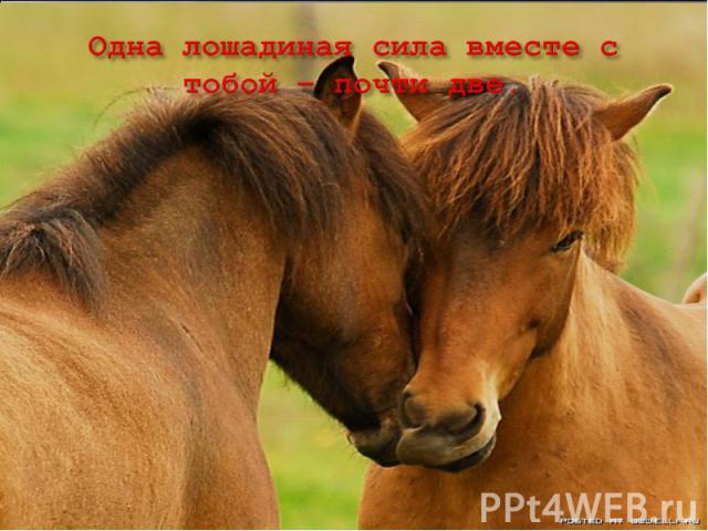 Одна лошадиная сила вместе с тобой – почти две.