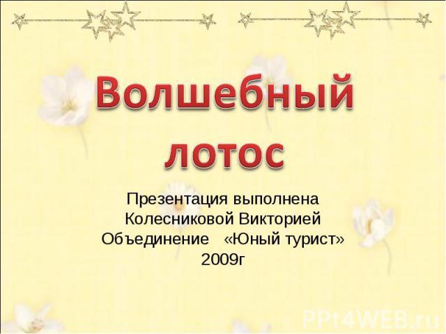 Волшебный лотос Презентация выполненаКолесниковой ВикториейОбъединение «Юный турист»2009г