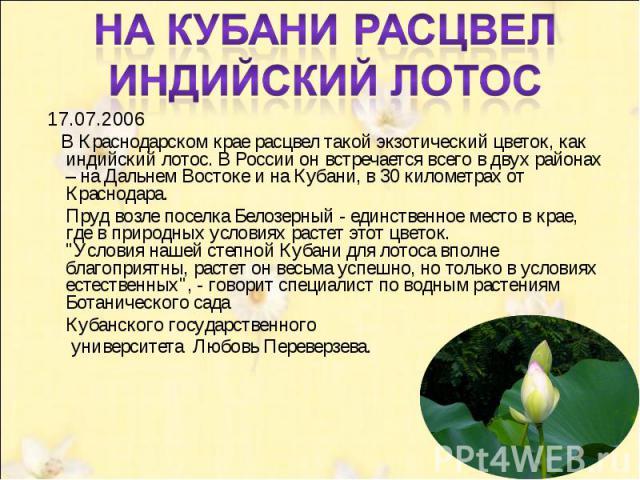 На Кубани расцвел индийский лотос 17.07.2006 В Краснодарском крае расцвел такой экзотический цветок, как индийский лотос. В России он встречается всего в двух районах – на Дальнем Востоке и на Кубани, в 30 километрах от Краснодара. Пруд возле пос…