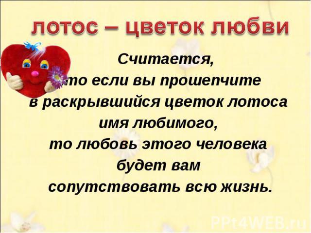 лотос – цветок любви Считается, что если вы прошепчите в раскрывшийся цветок лотоса имя любимого, то любовь этого человека будет вам сопутствовать всю жизнь.