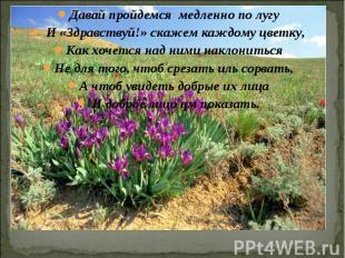 Давай пройдемся медленно по лугу И «Здравствуй!» скажем каждому цветку,Как хочет