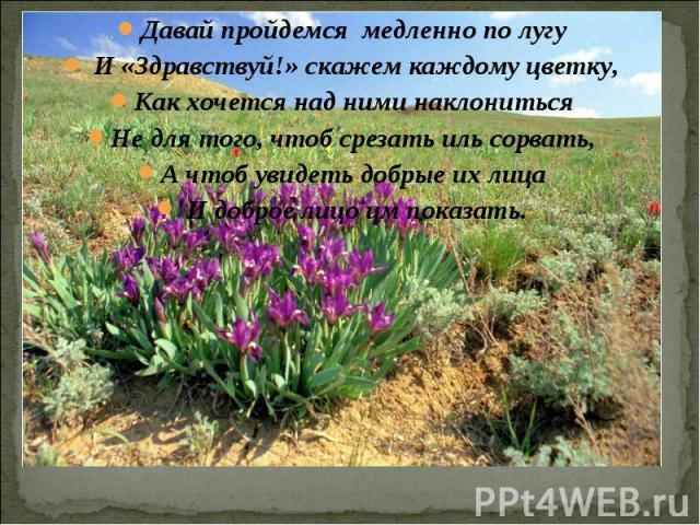 Давай пройдемся медленно по лугу И «Здравствуй!» скажем каждому цветку,Как хочется над ними наклонитьсяНе для того, чтоб срезать иль сорвать,А чтоб увидеть добрые их лица И доброе лицо им показать.
