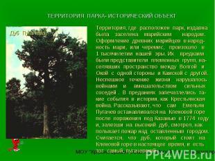 ТЕРРИТОРИЯ ПАРКА- ИСТОРИЧЕСКИЙ ОБЪЕКТТерритория, где расположен парк, издавна бы